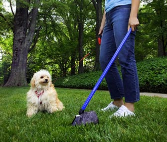 Dog and pooper scooper