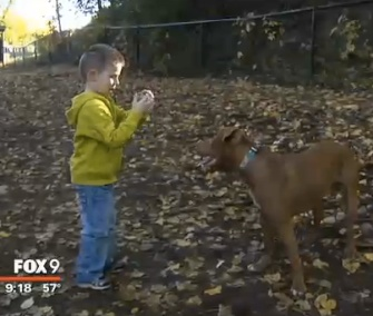 TaterTot is being credited with saving Peyton from a dangerous dip in his blood sugar level.
