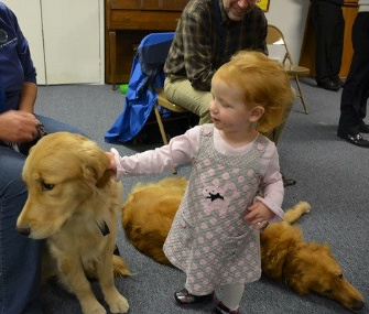Three Comfort Dogs from the Lutheran Church Charities in Chicago traveled to Marysville, Washington, to visit a community reeling from a school shooting.