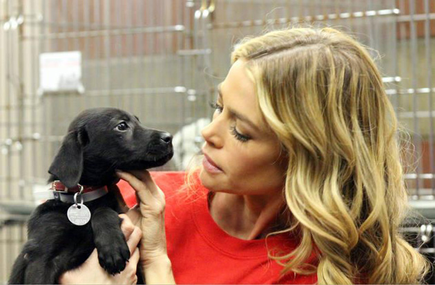 Denise Richards and Puppy