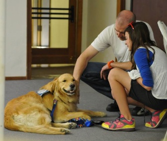 Two teams of comfort dogs spent the holiday weekend working in Arizona.