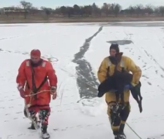 Colorado Springs firefighters saved two dogs from an icy lake.