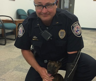 Marley, who was thrown into busy traffic, was adopted by a police officer in Midland, Texas.