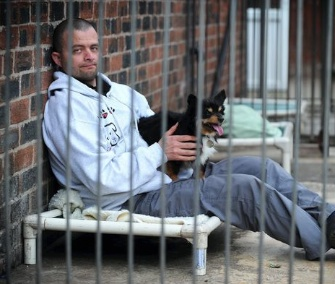 Sean Le Vegan sits in an outdoor day kennel at the Manchester Dogs Home.