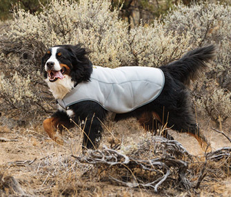 Ruffwear Swamp Cooler