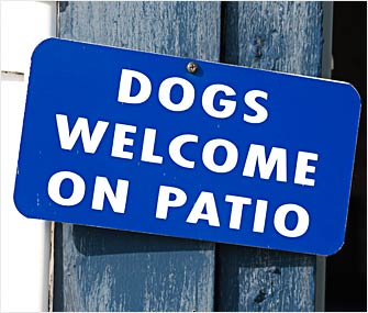 Dogs Welcome on Patio Sign