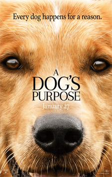"""A Dog's Purpose"" movie poster"