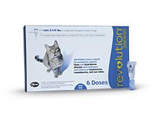 Revolution Cat Package