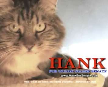 Hank the Cat for Senate