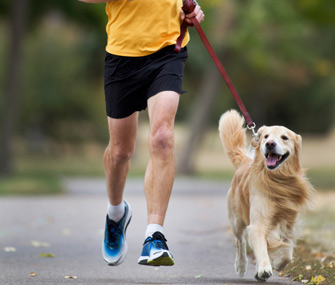 Man and dog jogging