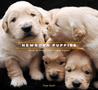 Newborn Puppies: Dogs in Their First Three Weeks Cover