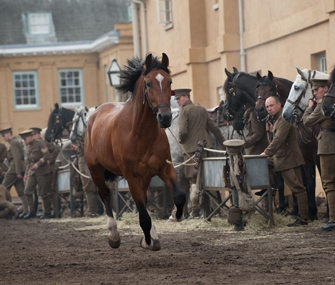 Joey runs through the army stables in this scene from War Horse