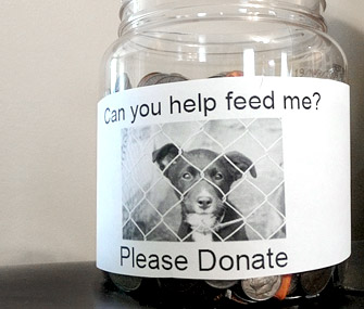 Feed a pet donation jar