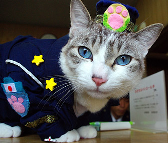 Iemon the Japanase Police Cat