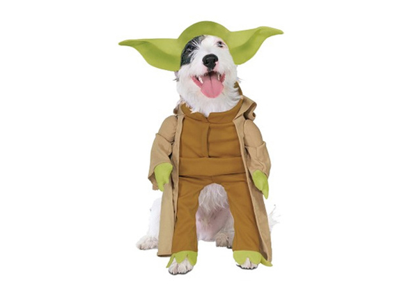 sc 1 st  Vetstreet.com & Googleu0027s Top 10 Pet Halloween Costume Searches