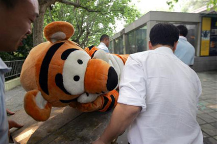 Escaped tiger drill at Chengdu Zoo in China