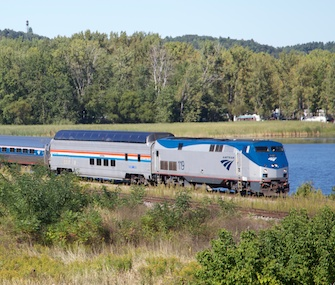 Some dogs and cats will be allowed about the Illinois Zephyr on a trial basis.