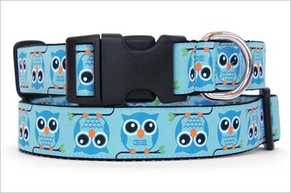 owl dog collar