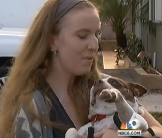 A Boston Terrier named Lola was returned to her original owners after 7 years.