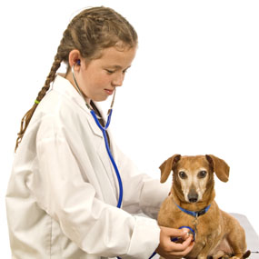 Little Girl Vet