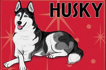 doggiedrawings Husky magnet