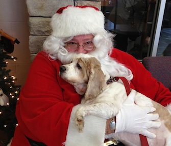 A sweet 13-year-old Spaniel loved visiting with Santa at a Virginia animal shelter.