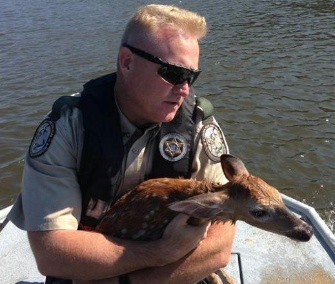 Officer Keith Baber holds a fawn he rescued from a Florida river.