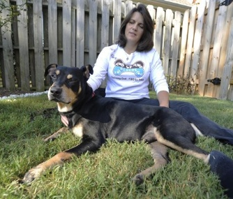 Lazarus, a mixed-breed dog who survived a euthanasia attempt and a car accident, sits by his new owner, Jane Holston.