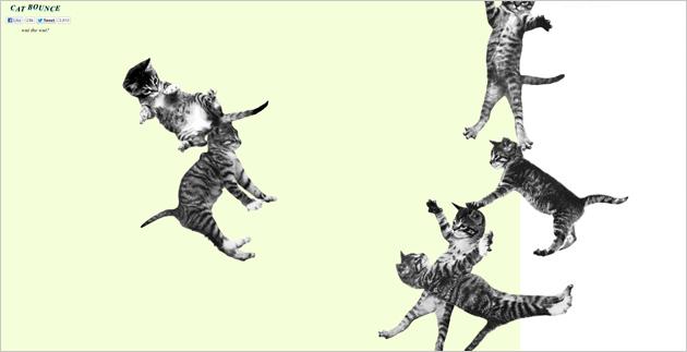 Cat-Bounce.com