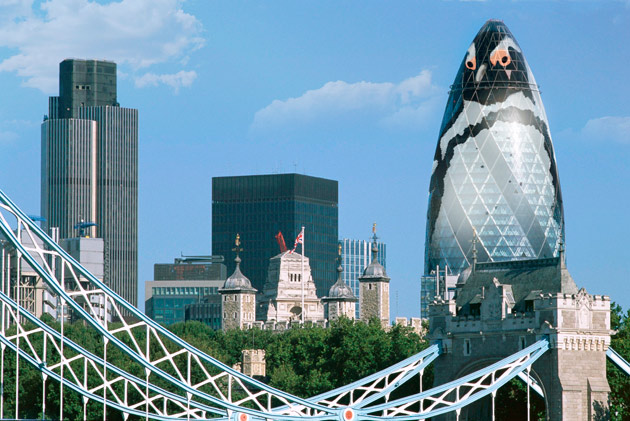 Gherkin to penguin