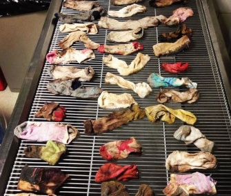 Veterinarians in Oregon found 43 socks in a Great Dane's stomach.