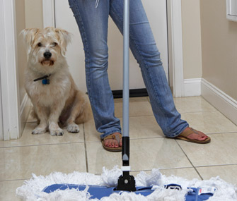 Dog owner cleaning accident