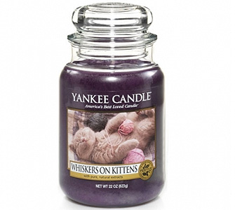 Whiskers on Kittens Candle