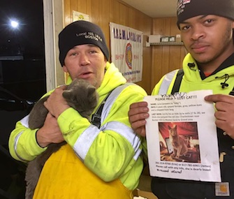 A cat who'd been lost for nine days was found by electrical workers on a steel beam above I-93 in Boston.