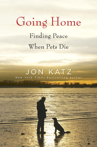 Cover of the book Going Home