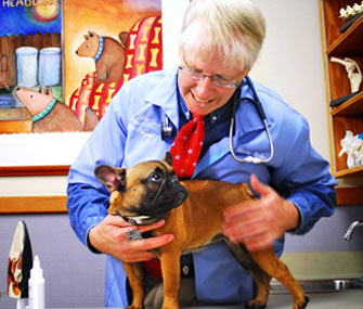 Dr. Marty Becker With French Bulldog