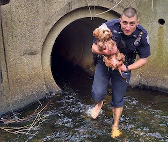 Woonsocket, Rhode Island, Police Officer Joseph Brail rescued a puppy from a water-filled culvert.