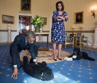 "Sunny Obama gets a ""Blue Room belly rub"" from the president."