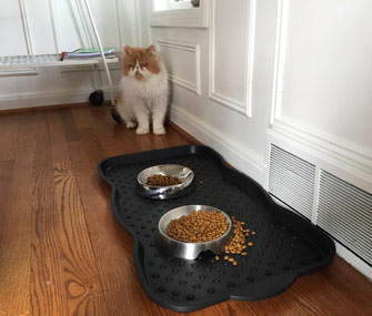 cat with food mat