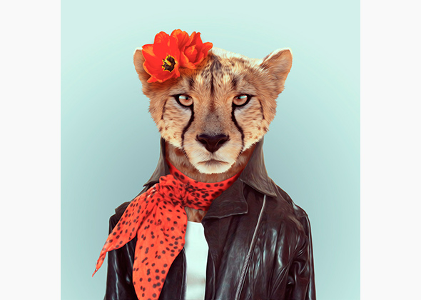 zoo portraits feature animals in clothing photo slideshow