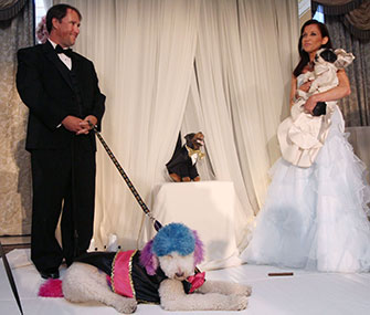 The happy couple pose at their wedding ceremony, which was officiated by Triumph the Insult Comic Dog.
