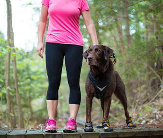 dog and human in woods wearing kurgo shoes