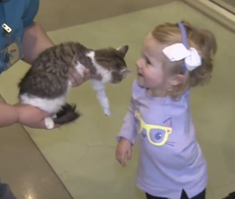 Scarlette, a 2-year-old amputee, meets her adopted kitten, Doc.