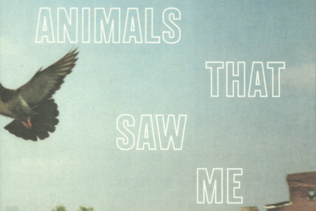 'Animals That Saw Me': a Photo Gallery