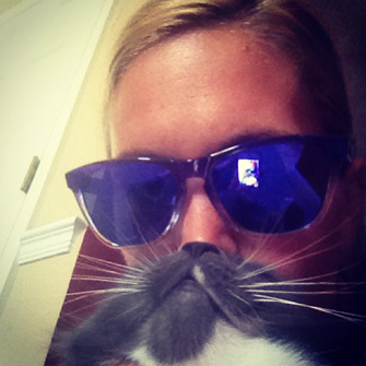 cat beards an internet fad we can get behind