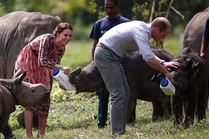 Prince William and Kate feed baby rhinos and elephants