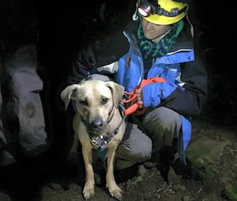 Dr. Emily Amsler, a volunteer with the Oregon Humane Society, checks Sandy after her rescue on Christmas night.