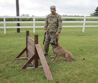 Alpha Dog at Hurdle