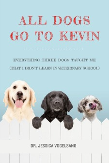 all dogs go to kevin book