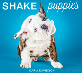 Shake Puppies Book Cover